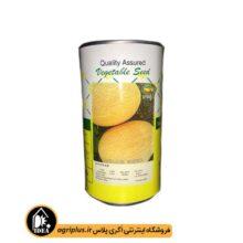 بذر خربزه ملون آناناسی راین