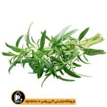 بذر سبزی مرزه بسته بندی خانگی
