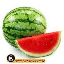 بذر هندوانه بسته بندی خانگی