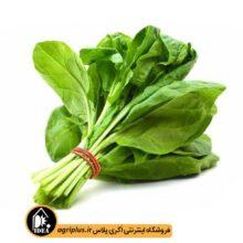 بذر سبزی شاهی بسته بندی خانگی