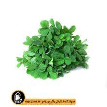 بذر سبزی شنبلیله بسته بندی خانگی