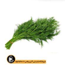 بذر سبزی شوید بسته بندی خانگی کارتن ۲۵ عددی