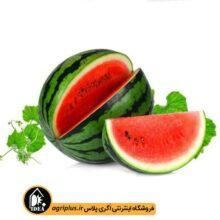 بذر هندوانه بسته بندی خانگی کارتن ۲۵ عددی