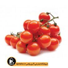 بذر گوجه چری قرمز گیلاسی PAPRIKA بسته ۱۰۰ تایی
