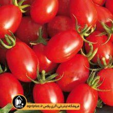 بذر گوجه چری زیتونی PAPRIKA بسته ۱۰۰ تایی