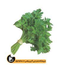 بذر سبزی جعفری آفتاب OP بسته ۵۰ گرمی